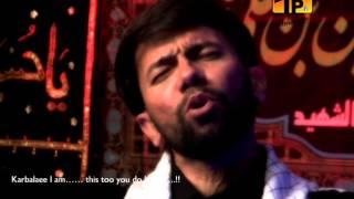 Aey Farishto Mujhe Karbala Le Chalo, Ali Safdar 2013-14