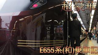 【豪華列車】念願のE655系乗車記(南房総探訪とうまいもんめぐり旅)