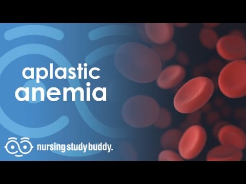 Aplastic Anemia - Nursing Study Buddy Video Library