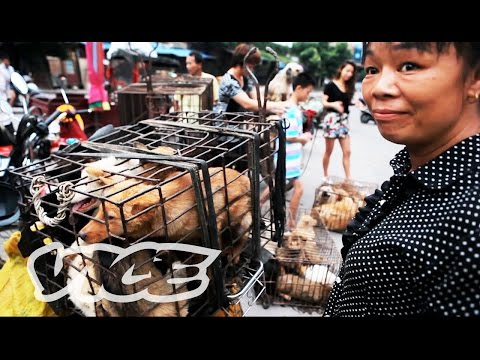 Dining on Dogs in Yulin: VICE Reports (Trailer)