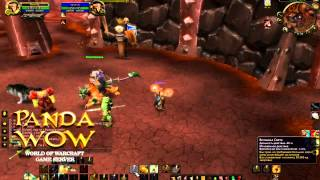 WoW:MoP:Гайд на ретро паладина