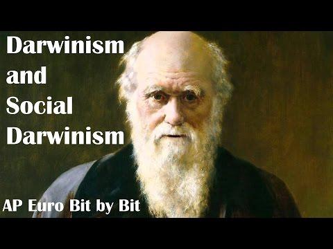Darwinism And Social Darwinism: AP Euro Bit By Bit #33