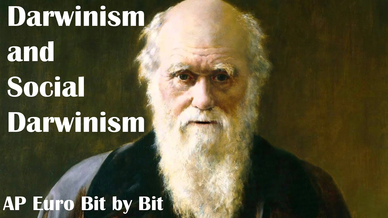 effects of social darwinism Start studying effects of social darwinism learn vocabulary, terms, and more with flashcards, games, and other study tools.