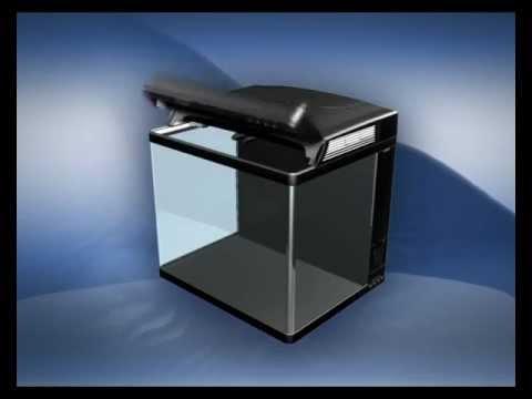 Sera cube 130 l michi ridha part 1 doovi for Sera aquarium