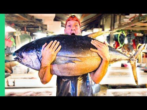 Filipino Seafood Tour! The Real King of Tuna in Mindanao!
