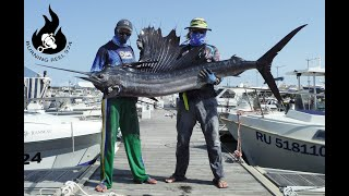 Catch Big Sailfish on Reunion Island 974