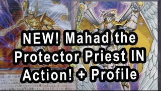 NEW Mahad the Protector Priest IN Action RAINBOW NEOS