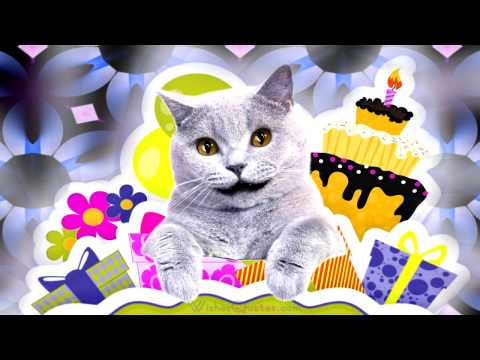 Cool Cat Singing Happy Birthday Dear Friend