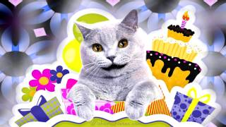 Cool Cat Singing Happy Birthday Dear Friend