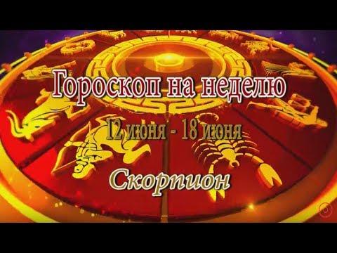 Скорпион – любовный гороскоп на сегодня