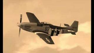 A Tribute to the 8th Air Force Mustang Pilots