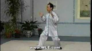 yang tai chi chuan part one