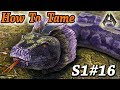 ARK TITANOBOA TAMING METHODS + TEST!! How To Tame A Titanoboa!! Ark Survival Evolved Ragnarok Ep16