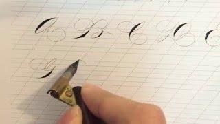 Spencerian Exemplar - Calligraphy by Hoang