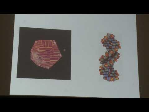 Твердислов В. А. - Основы биофизики - Нуклеиновые кислоты и их функции