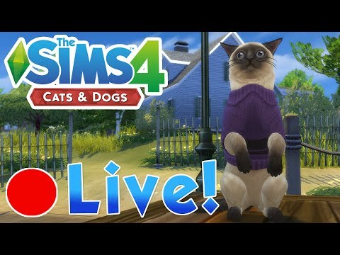 Sims 4: Cats & Dogs • Romancing Mayor Whiskers?! • Finished Stream!