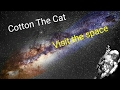 Cotton The Cat visit The Space