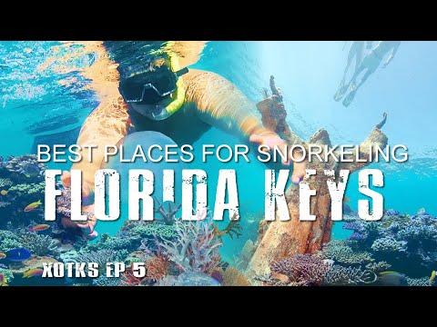 best-snorkeling-dry-tortugas-&-the-florida-keys-[must-visit]