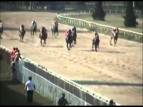 ม้าแข่งสนามเชียงใหม่ เสาร์ 4 มค.57