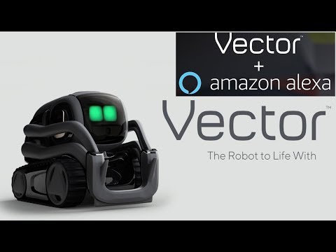 Now Artificial Intelligent Vector Robot  By Anki With Amazon Alexa Built In