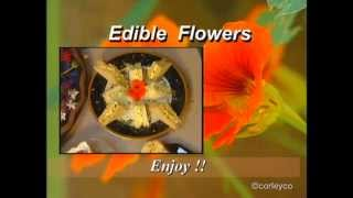 Edible Candied Pansies, Herbal Butter, Floral Confetti - Edible Flower Recipes
