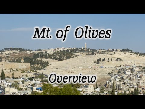 Mt. of Olives Overview: A Major Biblical Site Rich with Bible Events