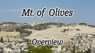 Mt. of Olives Overview: A Major Biblical Site Rich with Bibl...
