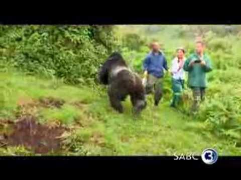 Top Travel explores Rwanda
