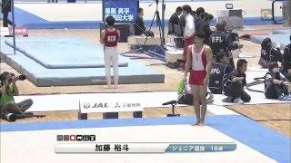 All Japan Artistic Gymnastics Team Championships Final D6.7/E8.550/...
