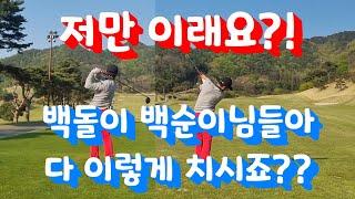 골프 미스샷 모음! 백돌이 골프 백순이 골프 치시는 분들은 보통 이렇게 치시지 않나요??^^;; 저만 이래요?