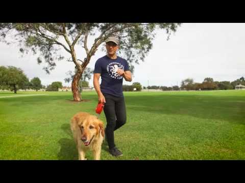 Destination WA - Pet Friendly Perth