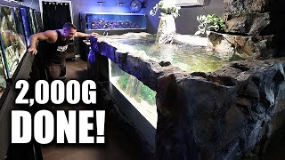 MY LARGEST AQUARIUM IS DONE!!