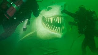 13 Most Chilling Things Ever Found by Deep Sea Divers