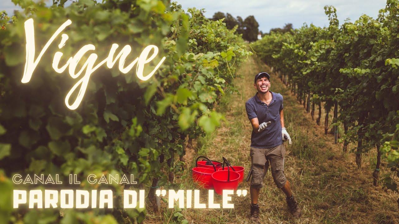Download VIGNE - PARODIA DI MILLE