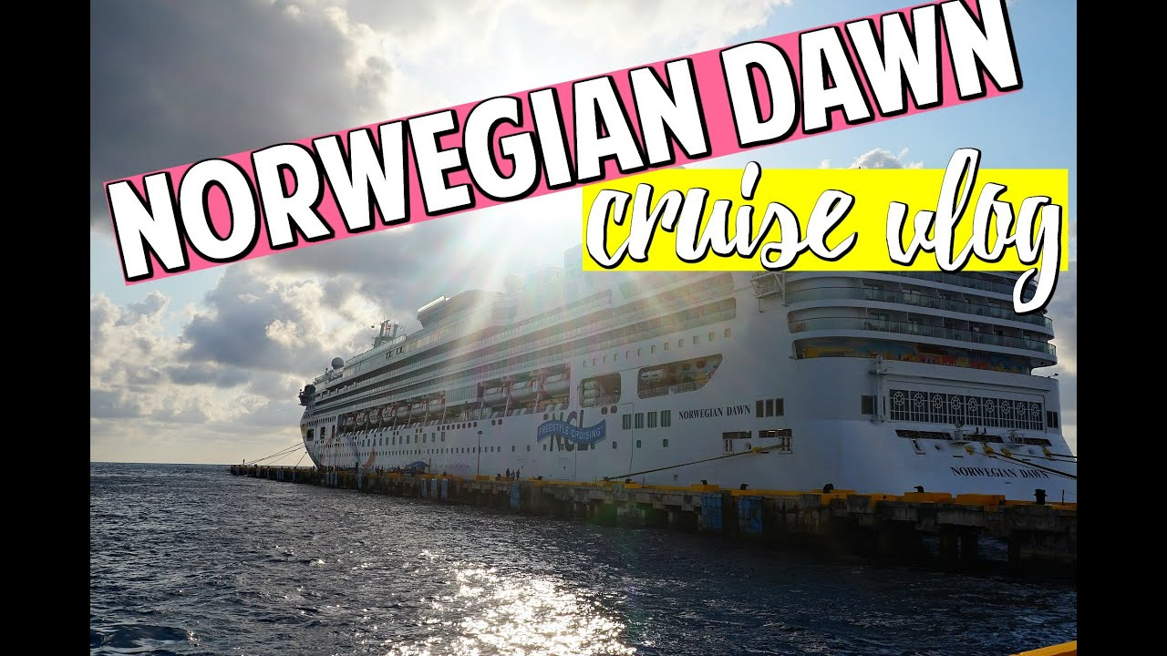 Cabin inside bathroom - Norwegian Dawn Cruise Vlog 2 Inside Cabin Bathroom Tour