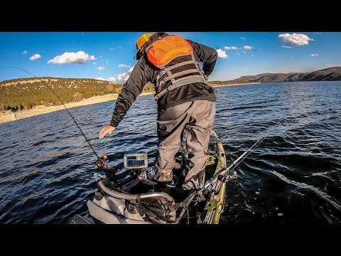 There Is Trout Everywhere!!! | Rockport Reservoir