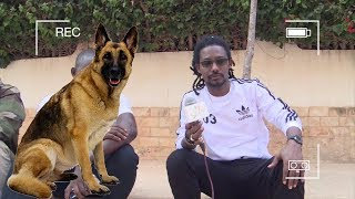 PAPE SIDY FALL ET LE CHIEN QUI LE TRAUMATISE