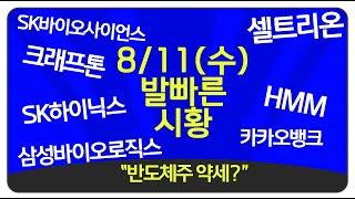 """8월11일(수) """"반도체주 약세?"""" 코스피 3…"""