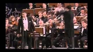 Franz Lehar - Das Land des Lächelns - Dein Ist Mein Ganzes Herz  -  Placido Domingo