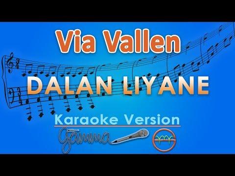 via-vallen---dalan-liyane-(karaoke)-|-gmusic