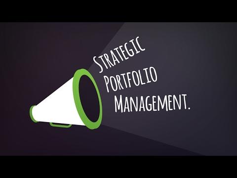 Strategic Portfolio Management Model