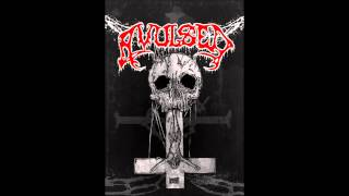 Avulsed - Daddy Stew