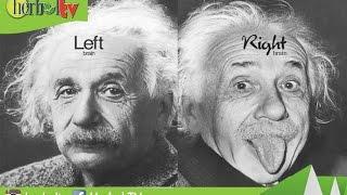 Video Cara Mengetahui Kamu Dominan  Otak Kiri Atau Kanan | How to Find Out the Left Brain or Right download MP3, 3GP, MP4, WEBM, AVI, FLV November 2017
