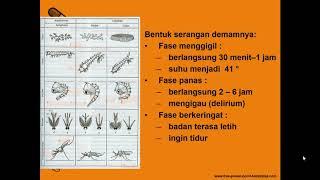 Konsep umum : Dasar sistem imun, sistem pertahanan tubuh, imunologi.