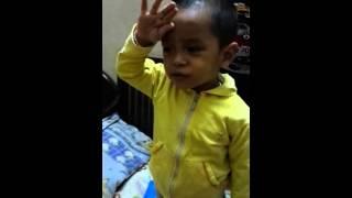 Dolphin 2 tuổi hát Quốc ca, Đội ca