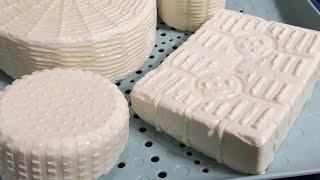 Брынза Сербская Брынза по мотивам рецептуры Как сделать сыр в домашних условиях Сыроделие