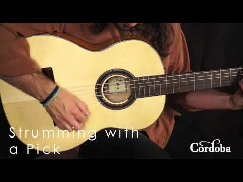 Cordoba Guitars - F7 Flamenco Guitar