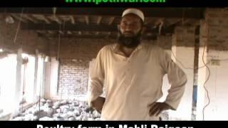 Poultry Farm in Mahli Rajgaan Teh Kallar Syedan