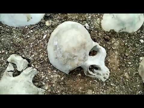 Skulls in Raisio