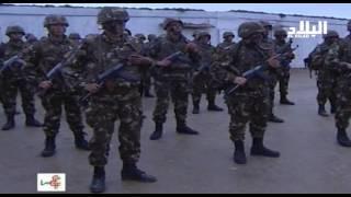الجيش الوطني الشعبي يحبط مخططات داعش وأخواتها -el bilad tv -